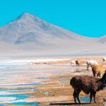 Visa Application for Bolivia:  Bolivia Visa for Indians in 3 Steps